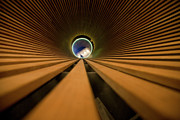 Green And Brown Photos - Light at the End of the Tunnel by Matthew Bamberg