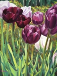 Realism Pastels - Light in Spring by Ariel Freeman