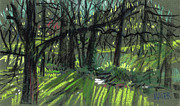 Plein Air Drawings - Light through the Trees by Donald Maier
