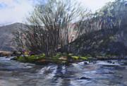 Harry Robertson - Light through trees at Aberglaslyn.