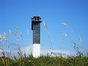 Sullivan Posters - Lighthouse in the Grass Poster by Shawna Cansdale