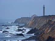 Point Arena Prints - Lighthouse on Rocky Coast Print by David Buffington