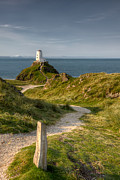 Path Digital Art - Lighthouse Twr Mawr by Adrian Evans
