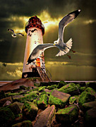 Flying Gull Posters - Lighthouse With Seagulls Poster by Meirion Matthias