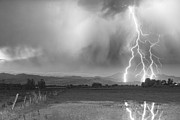 Lightning Photography Photos - Lightning Bolts Striking Longs Peak Foothills 6BW  by James Bo Insogna