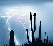 Lightning Storms Photos - Lightning Storm Chaser Payoff by James Bo Insogna