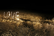 No Love Posters - Lights Trails Spelling Love In Field At Night Poster by Jan Stromme