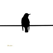 Ducks Digital Art Prints - Like a Bird on the Wire Print by Dale   Ford