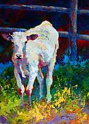 Cattle Painting Prints - Like My Daddy Print by Marion Rose