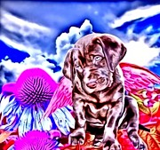 Puppies Digital Art Metal Prints - lil Angels Chocolate Lab Metal Print by Tisha McGee