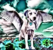 Puppies Digital Art Metal Prints - Lil Angels The Lab Metal Print by Tisha McGee