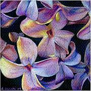 Lilac 1 Print by Audi Swope