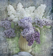Lilacs Digital Art Framed Prints - Lilac Framed Print by Jeff Burgess