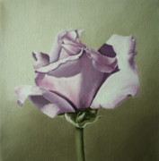 Flower Still Life Prints Posters - Lilac Lavender Purple Rose Flower Painting Art Print Poster by Sally Holt