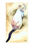 Siamese Paintings - Lilac Point Siamese Cat by Christy  Freeman