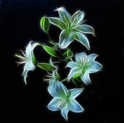 Indiana Flowers Prints - Lilies Print by Sandy Keeton