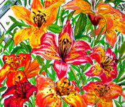 Crimson Lilies Prints - Lilies two Print by Nancy Rucker