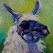 Ewe Painting Prints - Lilloet - Llama Print by Marion Rose