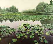 Lilly Pond Painting Prints - Lilly Pond Dreams Print by Lorna Saiki