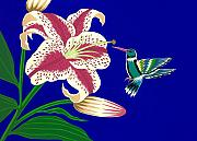 Lily And Hummingbird Print by Lucyna A M Green