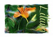 Lilies Digital Art - Lily by Bob Salo