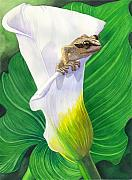Calla Lily Paintings - Lily Dipping by Catherine G McElroy