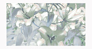 Canvas Art Prints - Lily Garden Print by Jayne Logan Intveld
