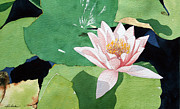 Lilies Paintings - Lily by Jim Gerkin
