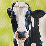 Cows Acrylic Prints - Lily Acrylic Print by Laura Carey