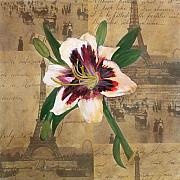 Burgundy Mixed Media Posters - Lily of France Poster by Carrie Jackson