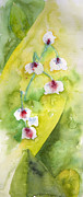 Lily Of The Valley Posters - Lily of the Valley Poster by Lynne Furrer