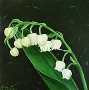 Lily Of The Valley Posters - Lily of the valley Poster by Tiha  Toleva