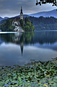 Church Prints - Lily Pads at Lake Bled Print by Don Wolf