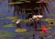 """texas Artist"" Mixed Media Posters - Lily Pond Watercolor Poster by Fred Jinkins"
