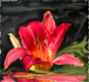 Lily Mixed Media - Lily Reflection by Heinz Mielke
