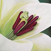 Photorealism Painting Posters - Lily Poster by Rob De Vries