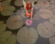 Water Lily Picture Prints - Lilypad Fairy Print by Patricia Ridlon