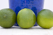 Gourmet Art Prints - Lime Print by Frank Tschakert