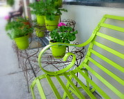 Lime Green Print by Cindy Wright