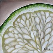 Ilse Kleyn Metal Prints - Lime Metal Print by Ilse Kleyn