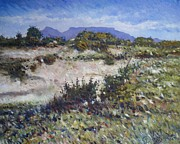 Enver Larney - Lime Quarry at Robben...