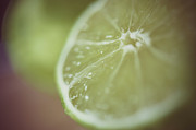 Citrus Fruit Posters - Lime Poster by Samantha Wesselhoft Photography