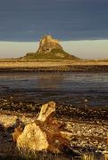 Featured Metal Prints - Lindisfarne, Northumberland, England A Metal Print by John Short