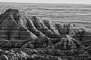 Badlands Photos - Line Them Up by Wilma  Birdwell