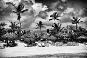 Lined Up Framed Prints - Lined Up at Punta Cana Framed Print by John Rizzuto