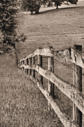 Barbed Wire Fences Photo Prints - Lines BW Print by JC Findley
