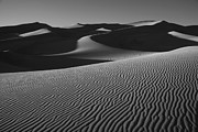 Sand Dunes Framed Prints - Lines in the Sand Framed Print by Timothy Johnson