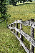Barbed Wire Fences Photo Prints - Lines Print by JC Findley