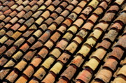 Tiling Prints - Lines of red tiles on a roof Print by Sami Sarkis