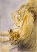 African Lion Painting Framed Prints - Lion and Cub Framed Print by Bonnie Rinier